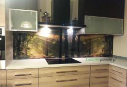 Szkło w kuchni - las